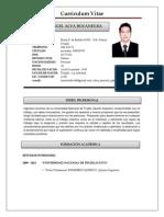 Curriculum Vitae - Manuel Alva Bocanegra