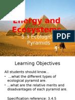5.3 Ecological Pyramids