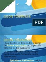 odontognesis-121021065025-phpapp02