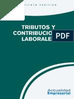 2015_lab_09_tributos_contribuciones.pdf