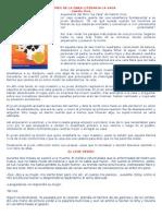 RESUMEN DE LA OBRA LITERARIA LA VACA.docx