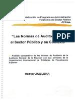 Las normas de auditoría para el Sector Público y su contexto.