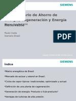 Co Generacion Brasil Siemens