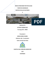 Informe de Intervencion Psicologica San Pedro