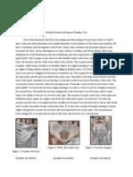 lab report 2 - google docs