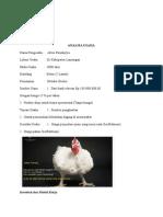 Plan Kandang Ayam