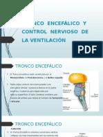 Tronco Encefálico y Control Nervioso de La Ventilación
