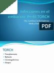 01. Perfil TORCH.pdf