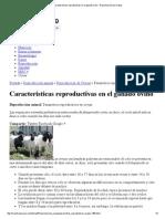 Caracteristicas Reproductivas en El Ganado Ovino - Reproducción de Ovejas