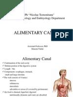 AlimentaryCanal(Author v.mazuru)