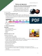 Tecnica_Ácidos y Bases. Determinación Del Carácter Ácidobásico de Distintas Sustancias_reacción de Neutralización