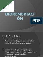 BIOREMEDIACIÓN