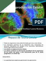 Ciclo Celular (1)