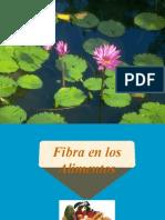 7. FIBRA EN LOS ALIMENTOS