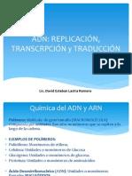 ADN, Replicación, Transcripción y Traducción.