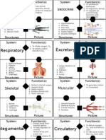 cardsort body systems gl