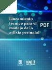 02. Lineamiento Técnico para el Manejo de Asfixia Perinatal