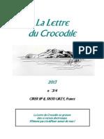 croco-13-3