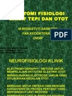 Anatomi Dan Fisiologi Saraf Tepi Dan Otot
