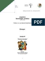 Sociologia Juridica - factores sociales