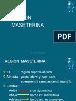 Region Maseterina Atm r. Temporal