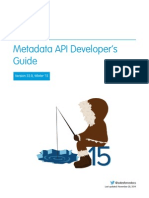 API Metadata Guide