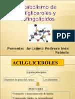 metabolismo de los acidos grasos.ppt