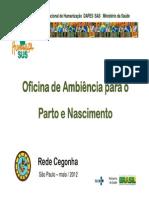 Ambiência Parto e Nascimento.pdf