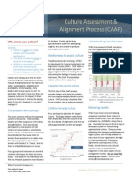 WP&C Spotlight - Culture Assessment and Alignment Process