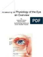Anatomy & Physiology of the Eye