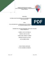 Los Precios de Transferencia en Las Empresas Multinacionales y Sus Efectos Fiscales 2009