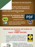 Analisis de Riesgos en Industrias Alimentarias Expo
