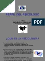 Perfil Del Psicologo