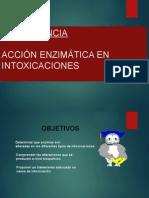 Diapositivas de Conferencia - Enzimas