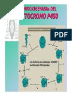 citocromoP_450