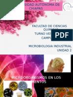 Microorganismos en Los Alimentos