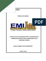 Proyecto de Factibilidad Para La Produccion y Comercializacion de Agua Saborizada