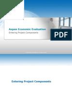 Aspen Economic Evaluation