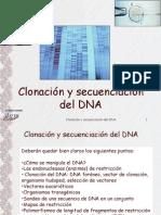 ADN Recobinante