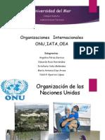 Organizaciónes ONU;IATA;OEA