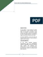 INFORME PUKA.pdf