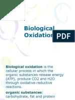 oksidasi biologi