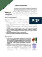 Negocios (RRHH) - Compensation Management 2015-2