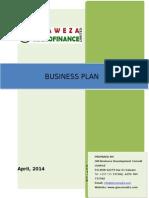 Twaweza Business Plan