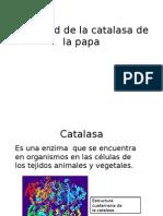 Actividad de La Catalasa de La Papa