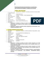 PRINCIPALES PROYECTOS SISTEMAS Y FLUIDOS SAC- MANEJO DE FLUIDOS- 2015.pdf