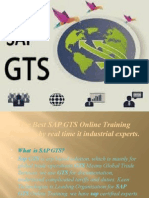 The Best SAP GTS Online training by real time IT industrial experts