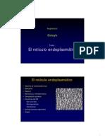 REquimica.pdf