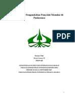 Haryo Ganeca - Program Pengendalian Penyakit Menular Di Puskesmas
