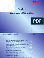 01 Gas Lift CAF 15012008
